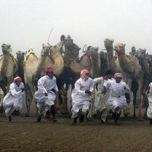 CAMEL START in Colour